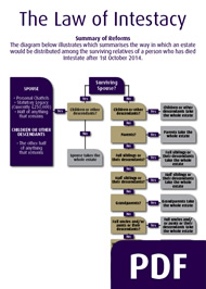 intestacy notes The notes which follow are a summary of some of the main provisions of scots succession law of particular interest to the general public other rights on intestacy.